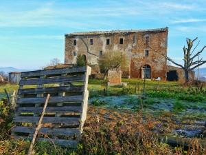 2) Abandoned