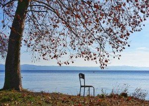 5) Solitary Chair